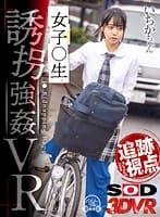 永野いち夏『【追跡視点】女子●生 ワゴン車で誘拐強●VR いちかちゃん』のパケ画像